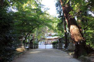 奥石神社参道